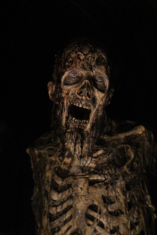 Φωτογραφία με ζόμπι από την έκτη σεζόν του The Walking Dead.